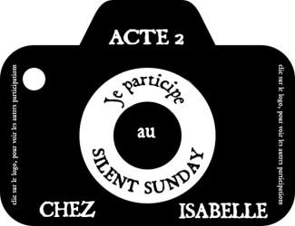 Silent- sunday – Chuut une photo pas un mot –4/21